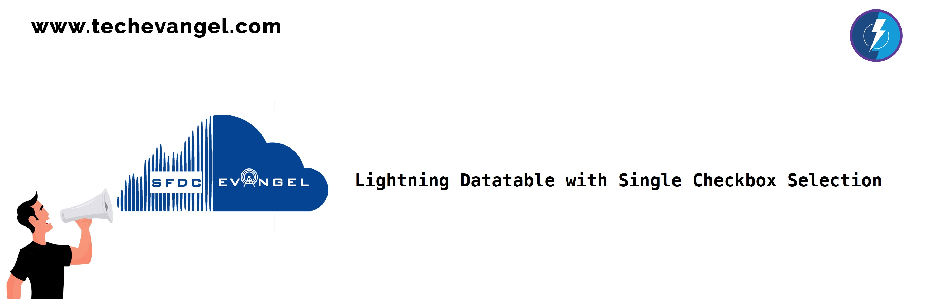 Lightning Single checkbox selector component poster